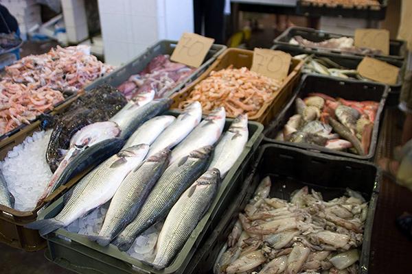 Fresh Fish, photo Tilen Travnik (CC BY 2.0)